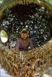 Josh in a nest.