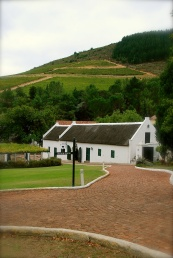 We have loved the beautiful vineyards in South Africa.