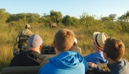Hooray - we found a black rhino!