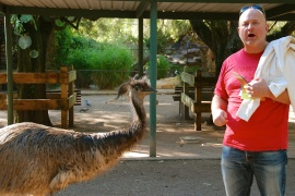 """Hey that emu bit my hand!"""