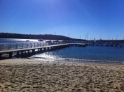 Most mornings we have been down to the spot at Balmoral Beach.